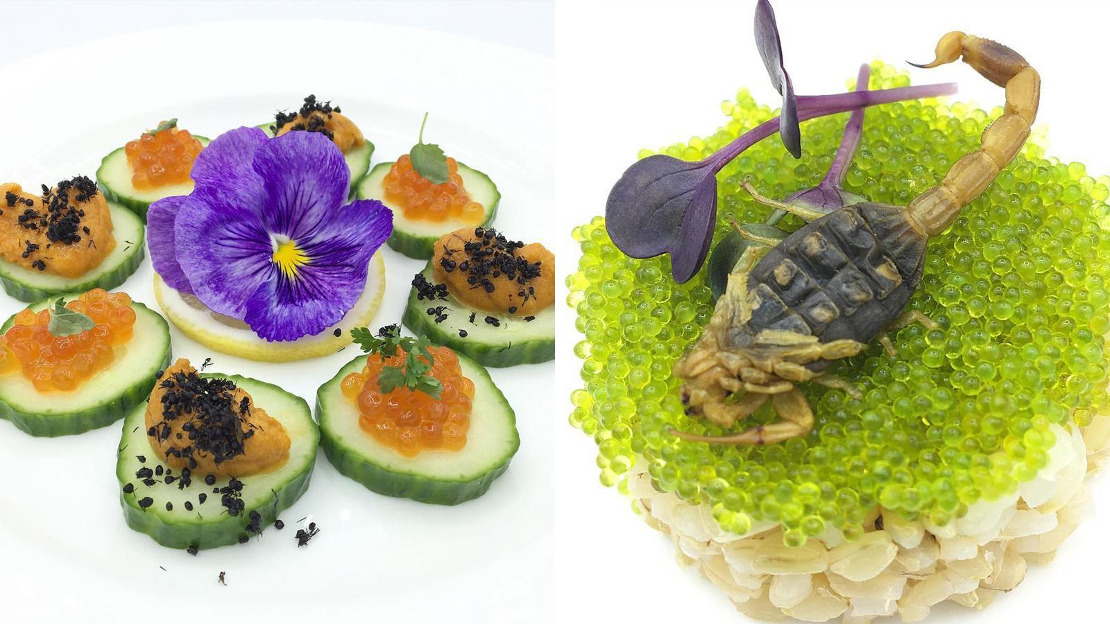 Restoran Di As Sajikan Makanan Mewah Dengan Topping Serangga Kurio
