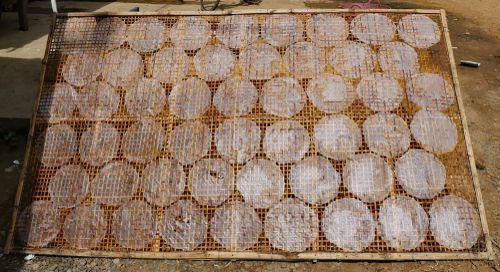 Proses Penjemuran Rice Paper