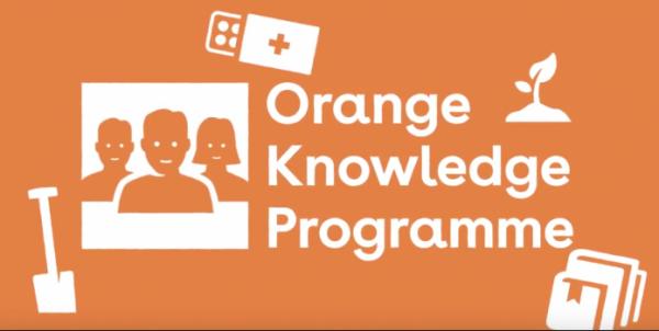 5 Beasiswa Full di Belanda Yang Wajib Kamu Coba 1